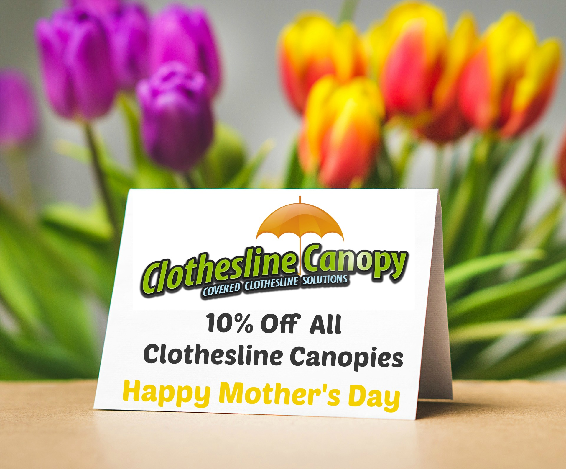 Mothers Day Offer 10